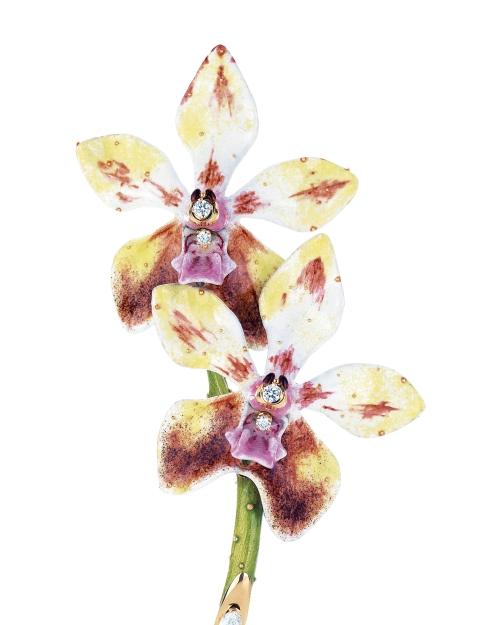 tiffany-orchid1