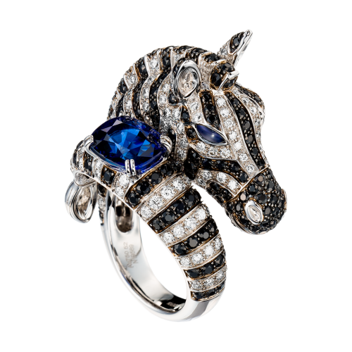 zebra-ring